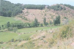 El Prat d'Or (1490 m) fou un  important sestejador del camí ramader